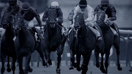 Video Longines presents Horse Racing 2014