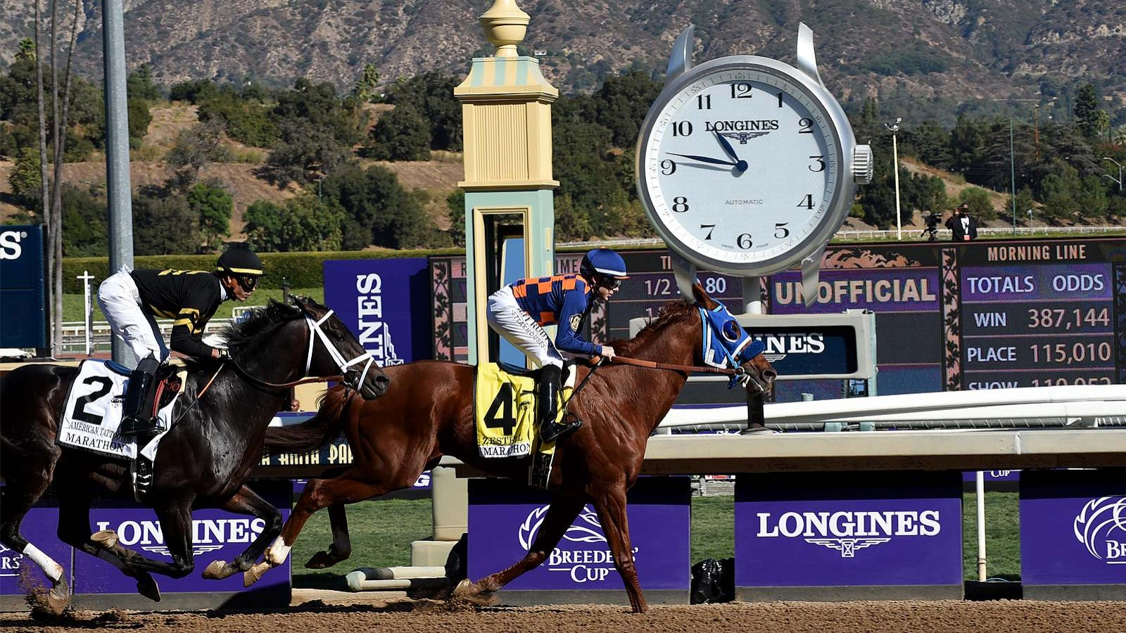 Breeders' Cup World Championships; November; 2019