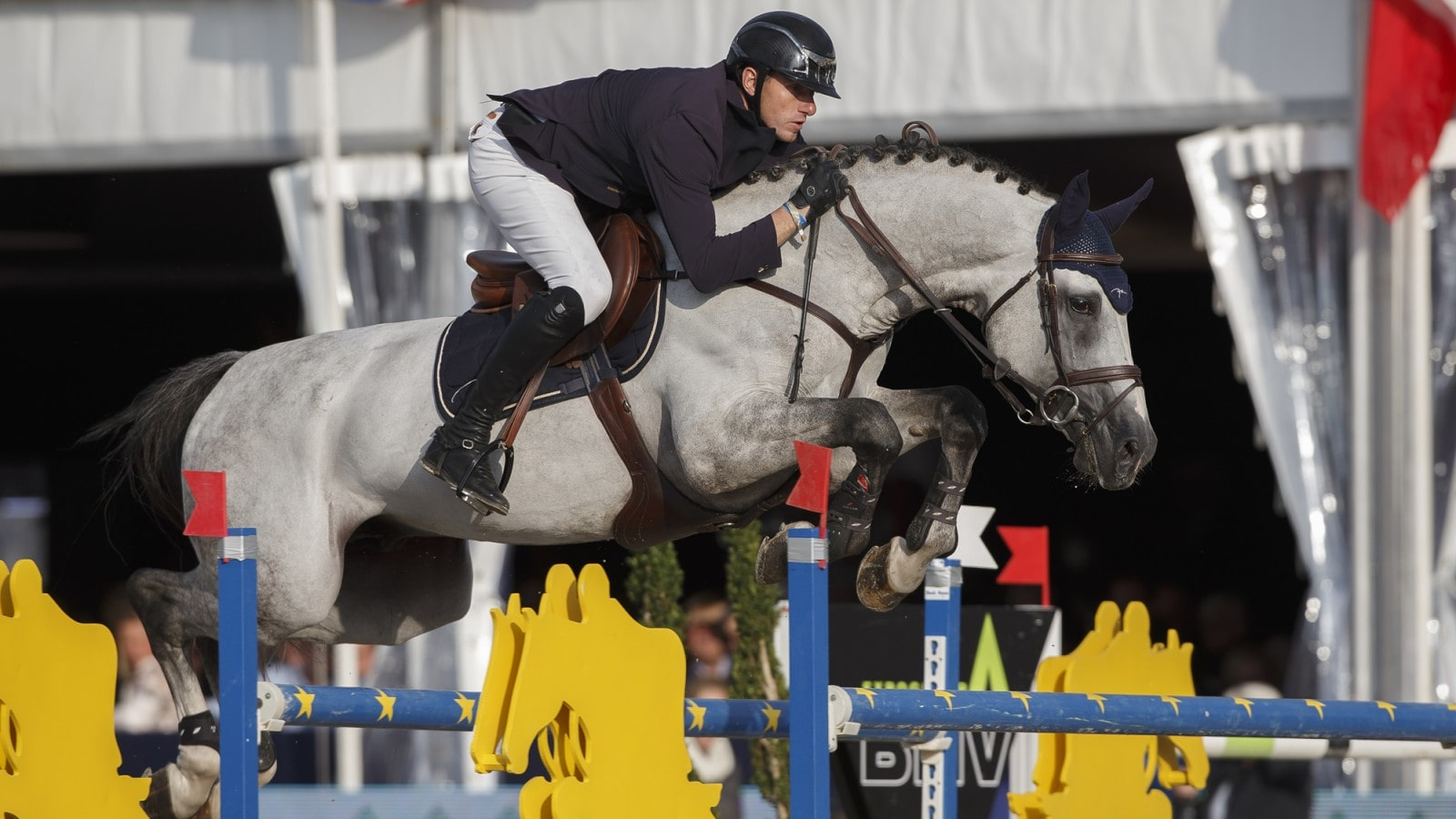 FEI World Breeding Jumping Championships for Young Horses 2015;Jumping