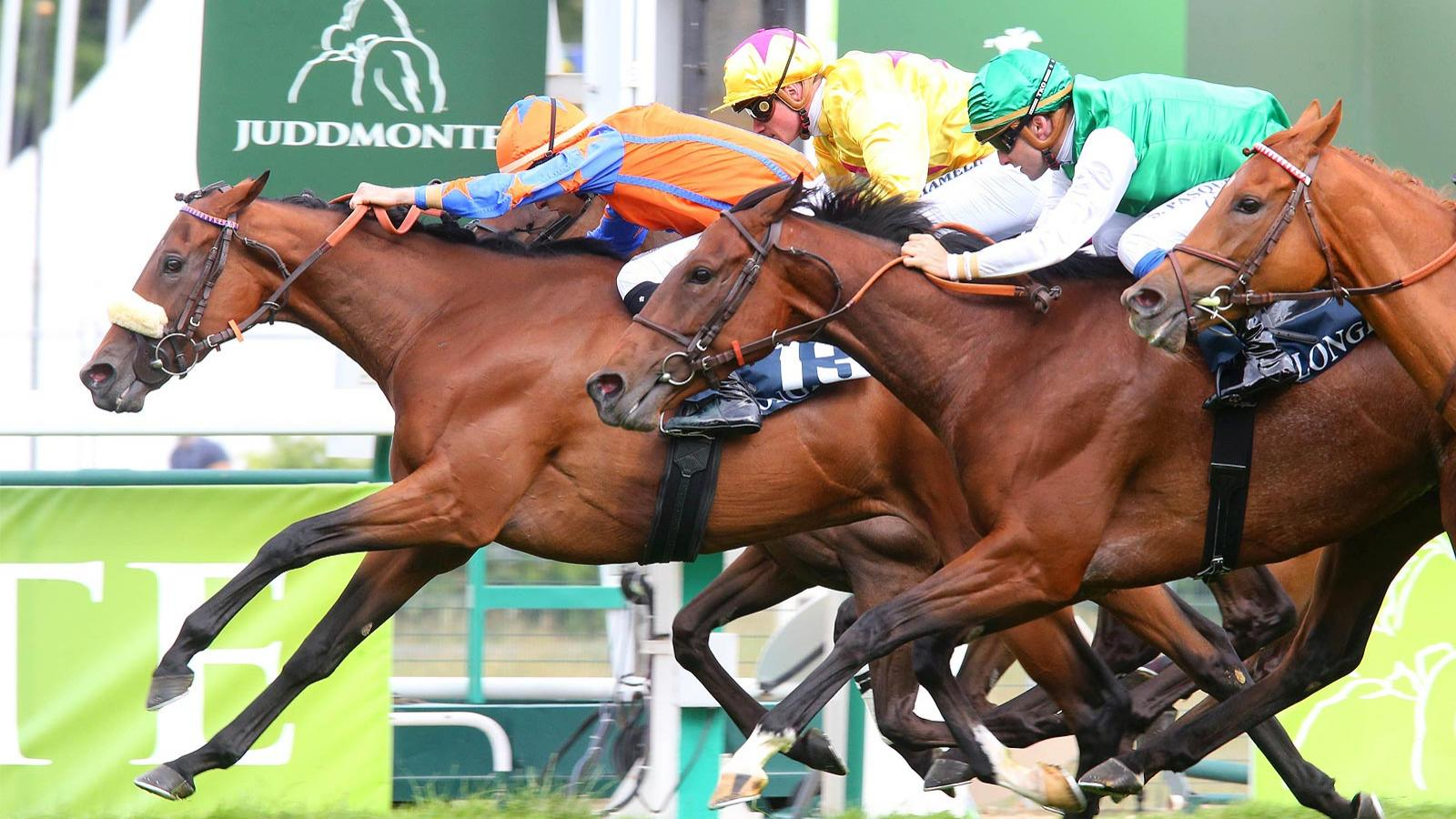 Longines Handicap de la Fête Nationale; Horse Racing; 2019