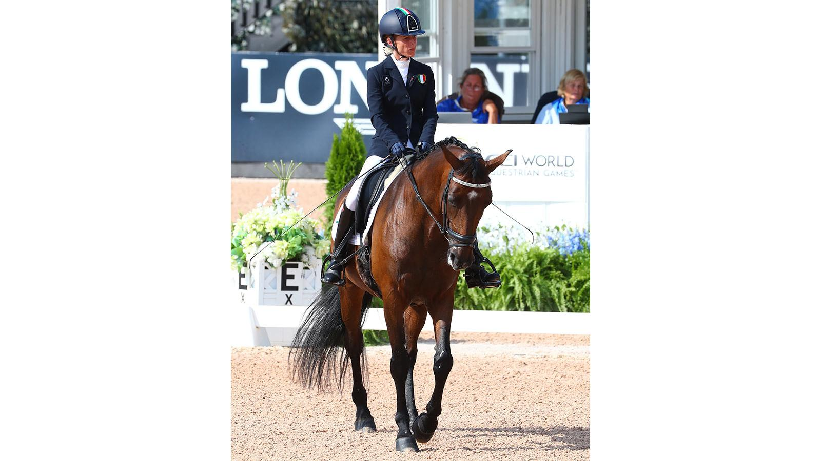 FEI World Equestrian Games Tryon 2018, Para-Dressage,pic3