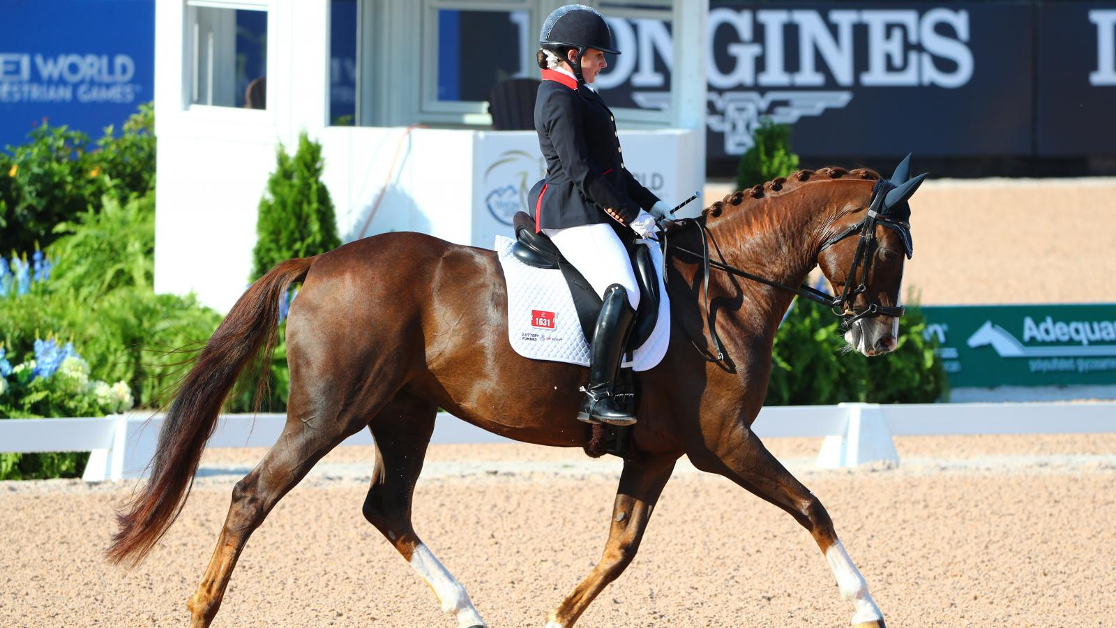 FEI World Equestrian Games Tryon 2018, Para-Dressage,pic4