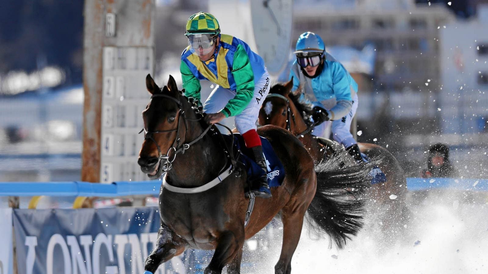 White Turf; St-Moritz; 2nd Raceday; February; 2017; Alexander Pietsch; Renny Storm