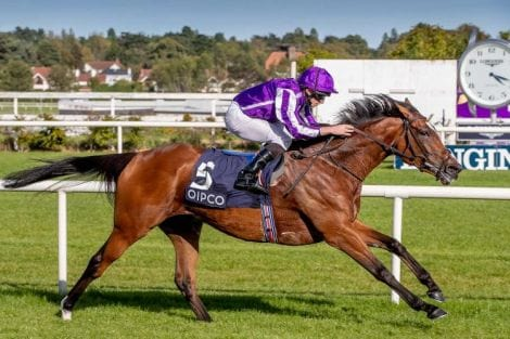 Longines Irish Champions Weekend; Horse Racing; 2019