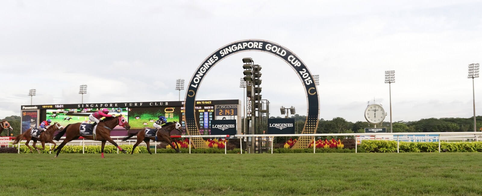 Horse Racing Singapore Gold Cup