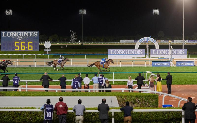 Dubai World Cup Carnival Opening night; Races; Presented by Longines: 2019