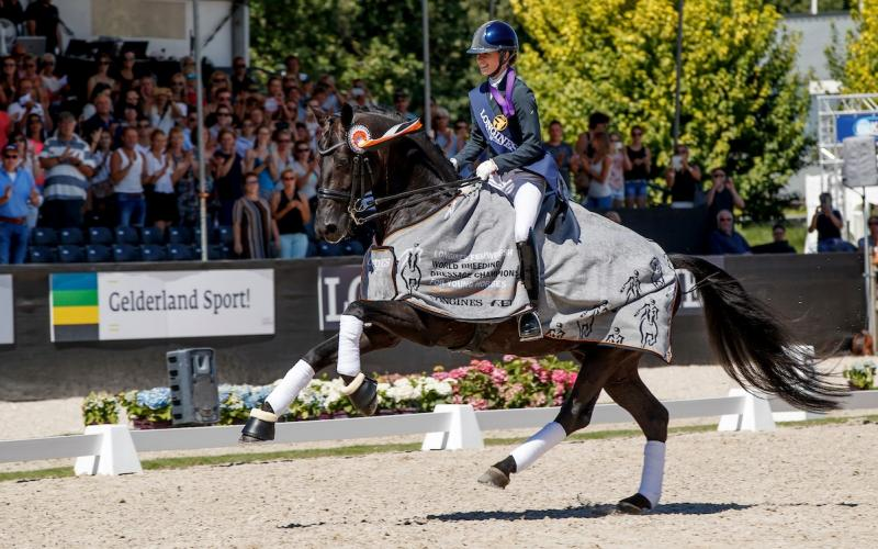 Dressage; Netherlands; Longines FEI/WBFSH World Breeding Dressage Championships for Young Horses; 2018