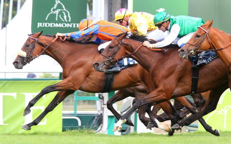 Calaconta, ridden by Eddy Hardouin, galloped to victory in the Longines Handicap de la Fête Nationale