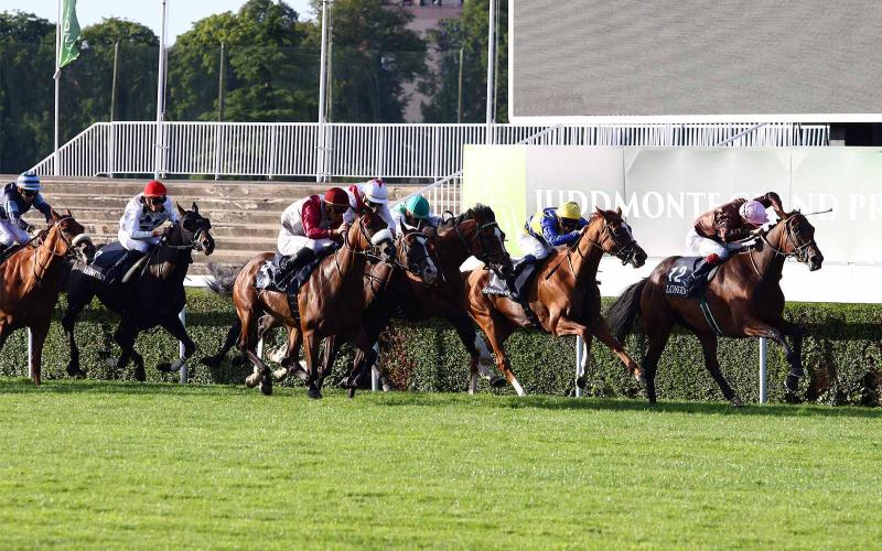 Saint-Cloud; FG Garden Party; The Longines Grand Handicap de la fête Nationale; The Longines Master Collection